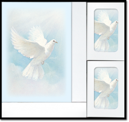 White Wings Book Set