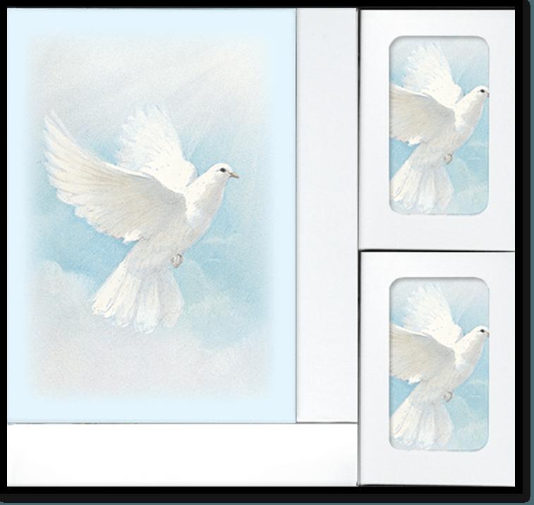 BS White Wings web 1 - Register Books & Folders