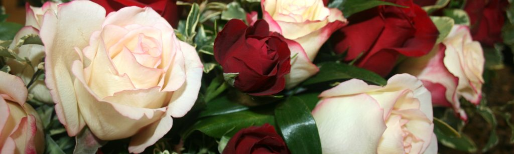 Dads Roses - Flowers