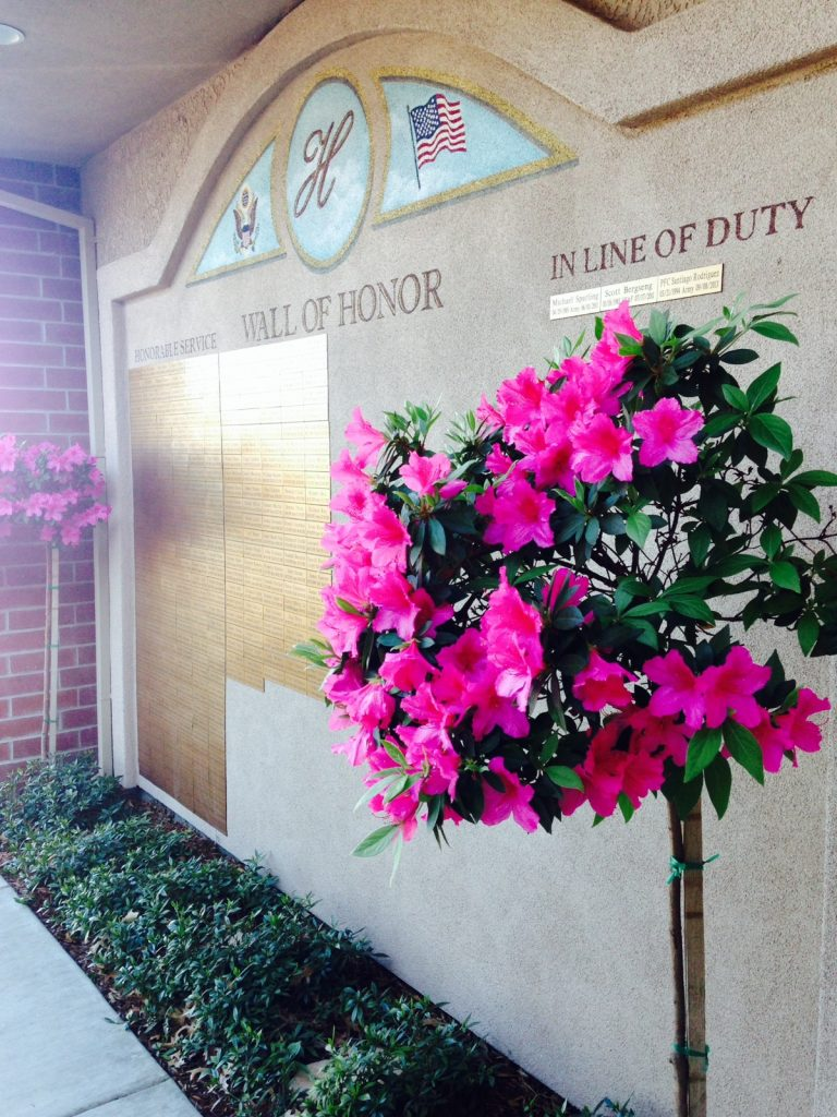WOH with Flowers in bloom4 - Snapshots of Veteran's Day of Honor
